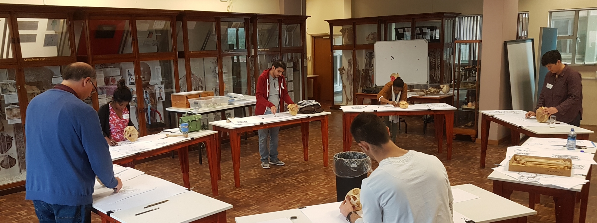 Observation & Drawing Method for Anatomy Study | Saturday 7 July 2018